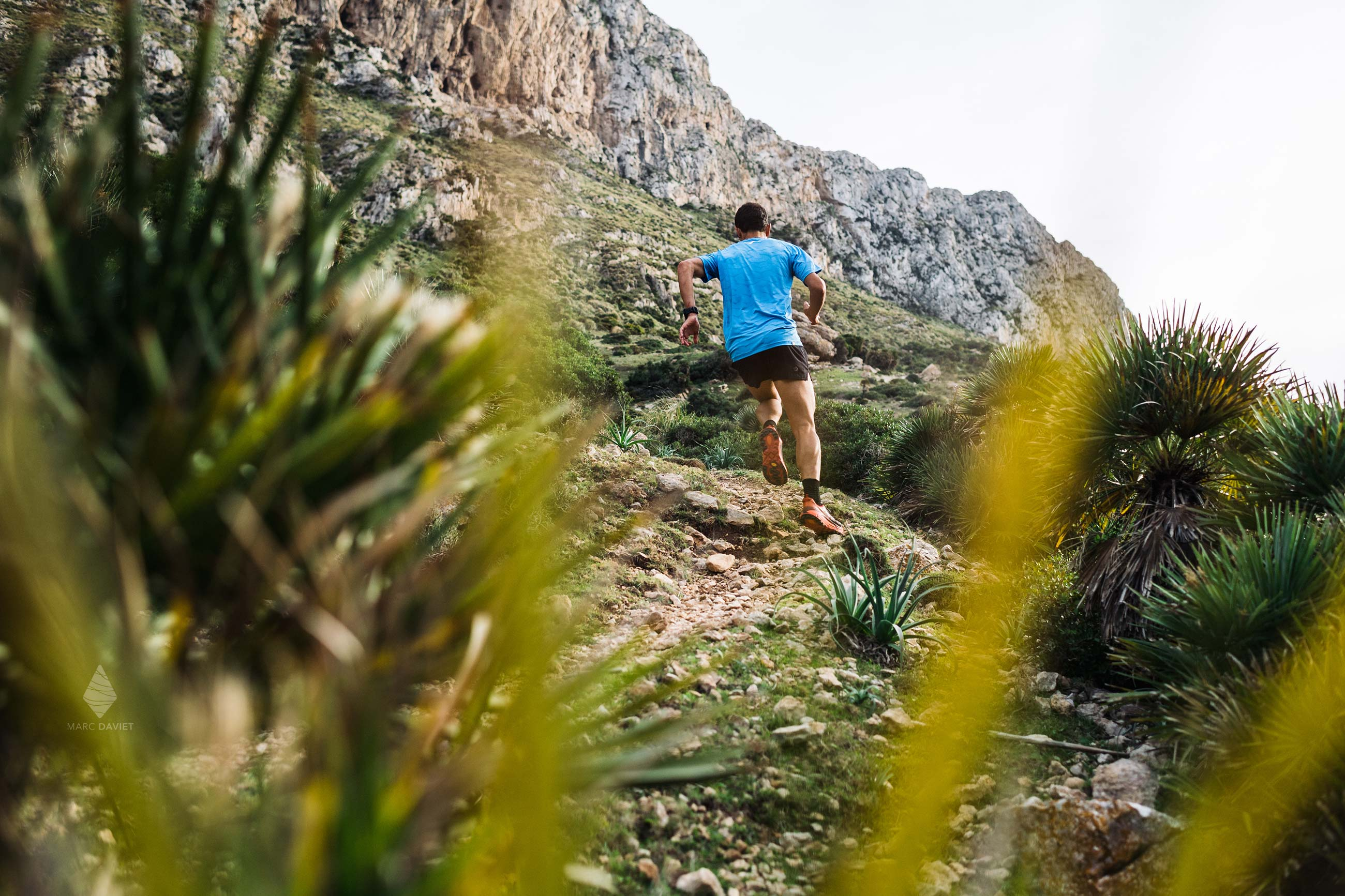 Running trails in Mallorca