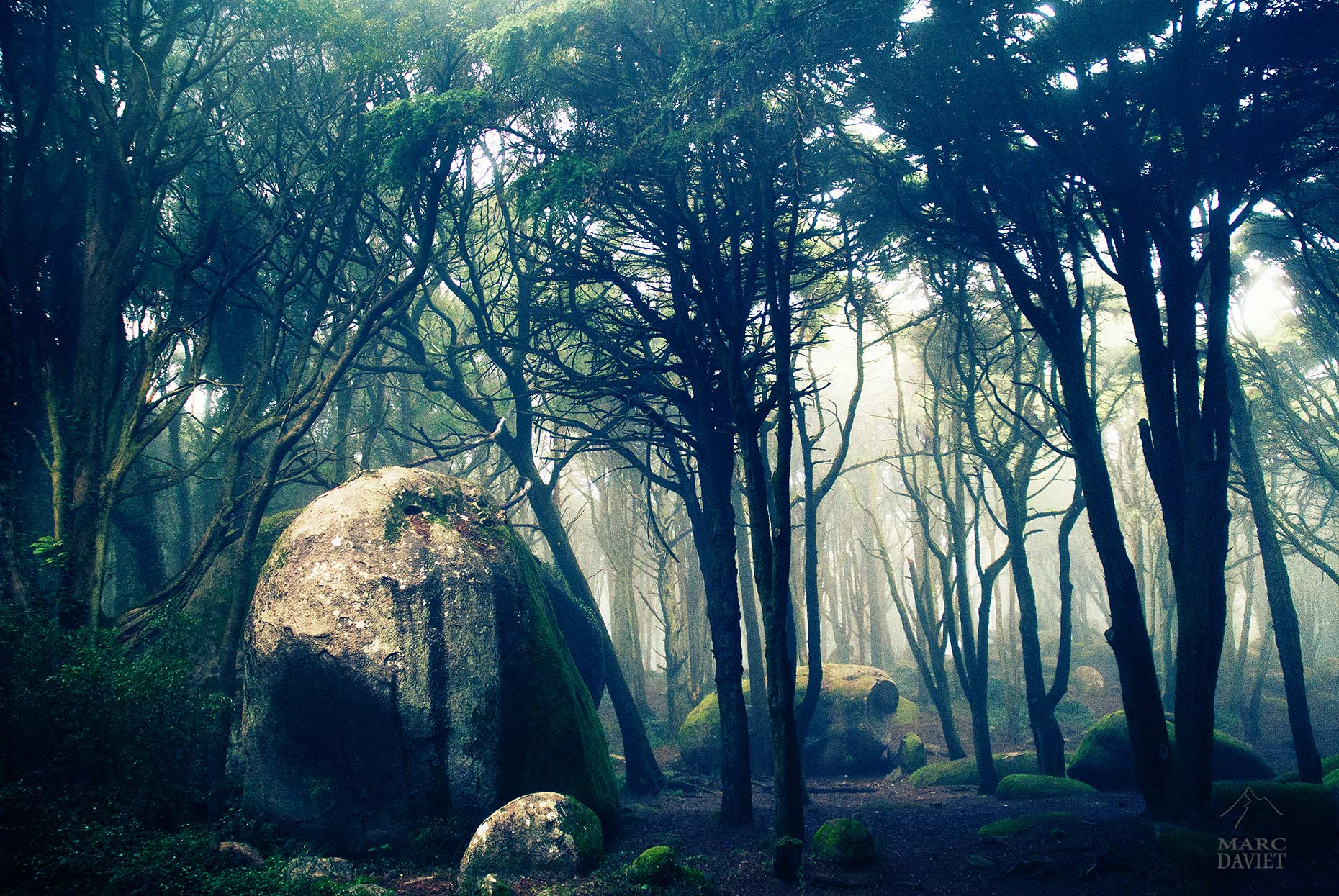 Sintra - Marc Daviet Photography